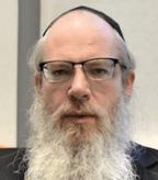 Профессор Михаэль Шапира