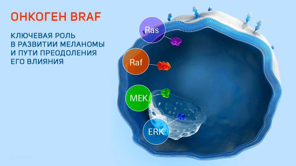 лечение мутации braf